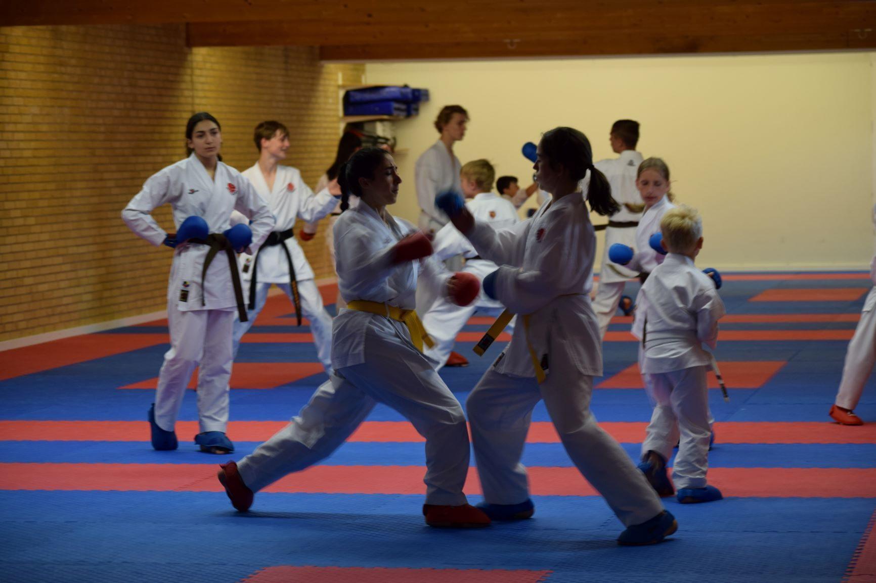 Dyrk sport - ikke administration, træning i Kaizen Karate Do, Kolding, Motivu rekrutterer medlemmer til idrætsforeninger